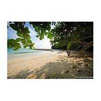 Exciting Tour in Havelock Island