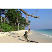 Andaman Beaches Packages