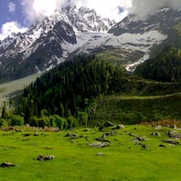 Breathtaking Kashmir Tour