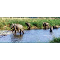 Grand Uttaranchal Tour