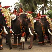 Pure Kerala Holiday Tour
