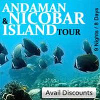Andaman Havelock Tour Package
