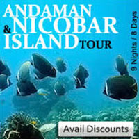 Andaman Havelock Tour Package